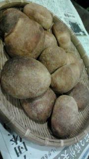 島バナナ酵母パン