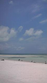 コンドイビーチ
